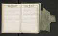 View Diary of Frances Anne Rollin digital asset number 30