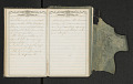 View Diary of Frances Anne Rollin digital asset number 31