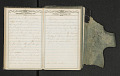 View Diary of Frances Anne Rollin digital asset number 33