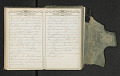 View Diary of Frances Anne Rollin digital asset number 38