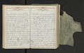 View Diary of Frances Anne Rollin digital asset number 59