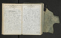 View Diary of Frances Anne Rollin digital asset number 60