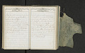 View Diary of Frances Anne Rollin digital asset number 75