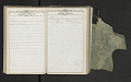 View Diary of Frances Anne Rollin digital asset number 76