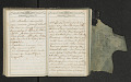 View Diary of Frances Anne Rollin digital asset number 100