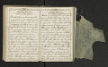 View Diary of Frances Anne Rollin digital asset number 112