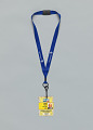 View Journalist pass for the 2013 Presidential Inauguration owned by Jim Vance digital asset number 0
