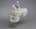 """View """"Equality"""" basketball shoes game-worn by LeBron James digital asset number 17"""