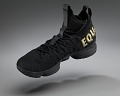 """View """"Equality"""" basketball shoes game-worn by LeBron James digital asset number 15"""