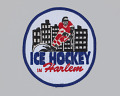 View Embroidered patch for Ice Hockey in Harlem digital asset number 0