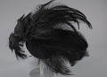 View Black feathered fascinator from Mae's Millinery Shop digital asset number 5