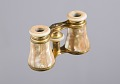 View Opera glasses and case owned by Mary Church Terrell digital asset number 3