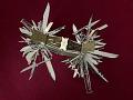 View Multiblade Folding Knife digital asset number 5