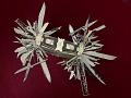 View Multiblade Folding Knife digital asset number 4