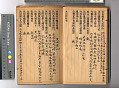 View Chinese Immigrant Study Guide digital asset number 2
