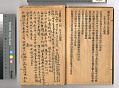 View Chinese Immigrant Study Guide digital asset number 5