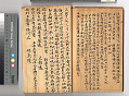 View Chinese Immigrant Study Guide digital asset number 6