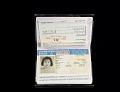 View Falsified passport, 1990s digital asset number 3