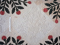 View 1850 - 1854 Mary C. Pickering's Applique Quilt digital asset number 2