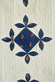 View 1840 - 1860 Catherine Byer's Pieced and Appliqued Quilt digital asset number 2