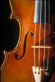 "View Stradivari Violin: ""The Greffuhle"" digital asset: Greffuhle violin,  F-hole"