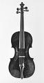 View German Violin digital asset number 0