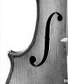 View Gagliano Violin digital asset number 3
