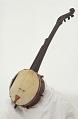 View Boucher Five-String Fretless Banjo digital asset number 0