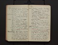 View Leo Baekeland Diary Volume 14 digital asset number 2