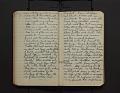 View Leo Baekeland Diary Volume 17 digital asset number 2