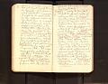 View Leo Baekeland Diary Volume 22 digital asset number 9