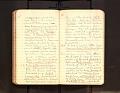 View Leo Baekeland Diary Volume 23 digital asset number 1