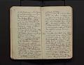 View Leo Baekeland Diary Volume 25 digital asset number 3