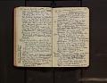 View Leo Baekeland Diary Volume 59 digital asset number 3