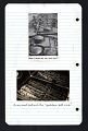 View Diary digital asset number 7