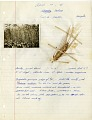 View Richard Adlard Collection digital asset: Agricultural notes with photographs
