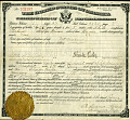View Eisler Engineering Company records digital asset: Passports and Naturalization Certificate