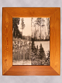 View Framed Photograph of Pine Trees digital asset number 0