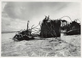 View Photographic History Collection: Carl Mydans digital asset: Return to Bikini -- Debris at sea