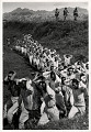 View Photographic History Collection: Carl Mydans digital asset: North Korean soldiers taken by US Marines and marched to the rear