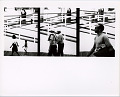 View Photographic History Collection: Ray Metzker digital asset: Three frames of people walking, photograph by Ray K. Metzker