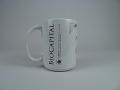 View Mug, BioCapital digital asset: Mug, BioCapital