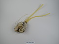 View Soft Shell Mushroom Artificial Heart digital asset number 7