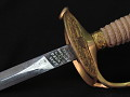 View Ames Sword Co. Model 1860 Staff and Field Officer's Sword digital asset number 2