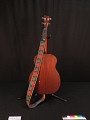 View Tenor Guitar, used by Nick Reynolds of The Kingston Trio digital asset number 2