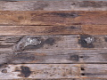 View road paving timbers digital asset number 2