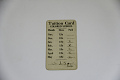 View Segregated School Tuition Card for Lillian T. M. Arnold digital asset number 0
