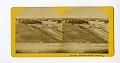 View No. 1009. Oak Bluffs, Martha's Vineyard. digital asset number 0