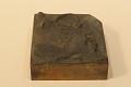 """View Engraved wood block """"Drummond's Islander"""" digital asset: Drummond's Islander"""