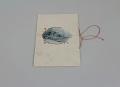 View Teacher Maude Mabel Dunkelberger's 1906 Souvenir Card for District No. 1 Public School, Cherokee, Iowa digital asset number 6